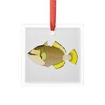 Titan triggerfish Square Glass Ornament