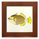 Titan triggerfish Framed Tile