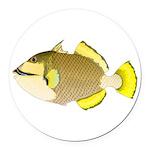 Titan triggerfish Round Car Magnet