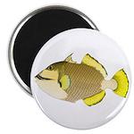 Titan triggerfish Magnets
