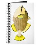 Titan triggerfish Journal