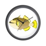 Titan triggerfish Wall Clock
