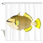 Titan triggerfish Shower Curtain