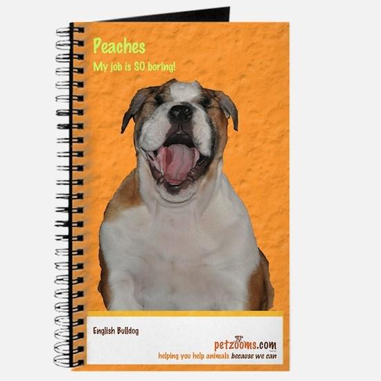 """My job is SO boring!"" Journal"