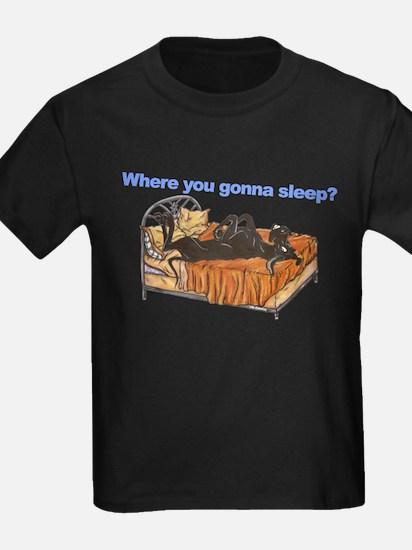 Blk Where you gonna sleep T