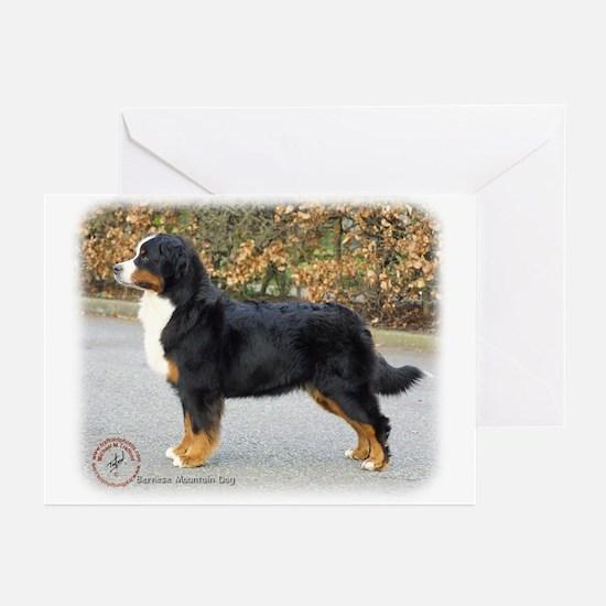Bernese Mountain Dog 9T066D-221 Greeting Cards (Pk