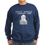 What would a scientist do? Sweatshirt (dark)