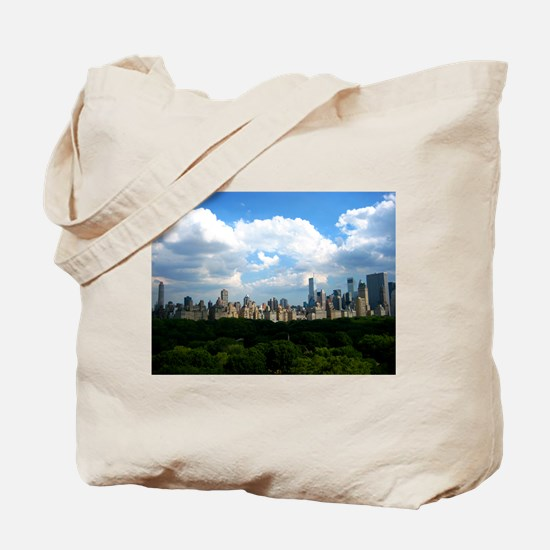 NY SKYLINE WITH CENTRAL PARK Tote Bag