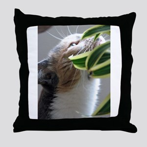 Somthing Special Throw Pillow