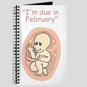 Baby due in February Journal