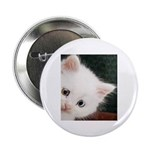 "The Eyes Have It 2.25"" Button (10 pack)"