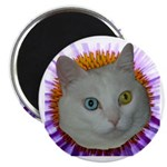 """One Blue 2.25"""" Magnet (100 pack)"""