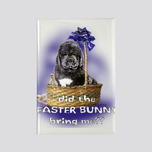 Easter Newfoundland Puppy Rectangle Magnet
