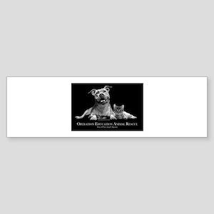 Operation Education Animal Re Sticker (Bumper)