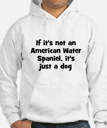 If it's not an American Water Hoodie