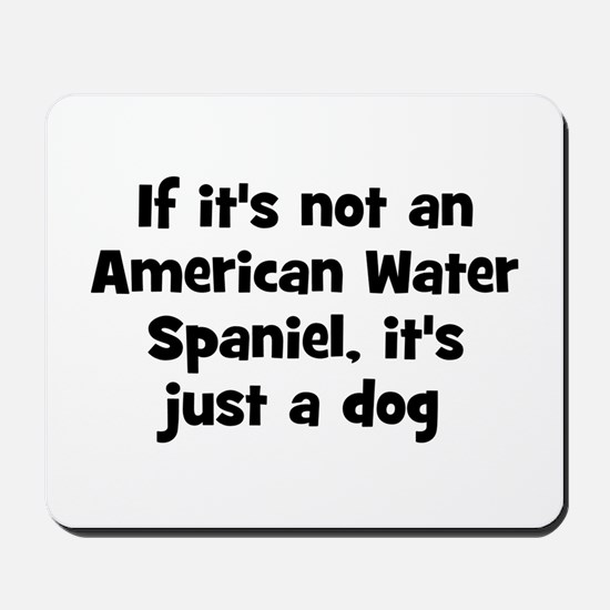 If it's not an American Water Mousepad