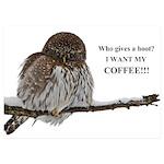 Coffee Owl 5x7 Flat Cards (Set of 20)