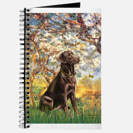 Spring / Choc Lab 11 Journal
