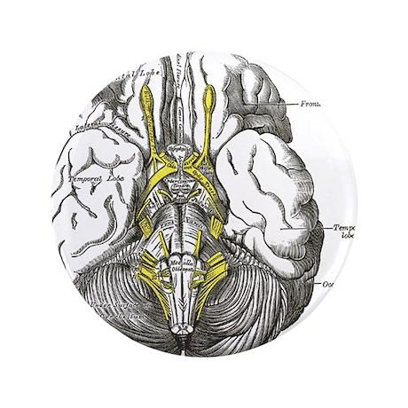 "Brain 3.5"" Button (100 pack)"