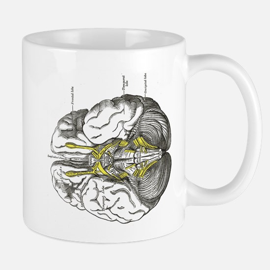grays brain anatomy Mug