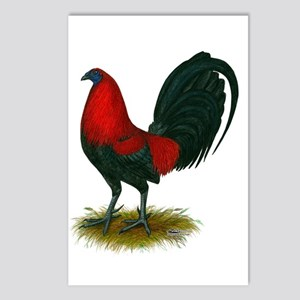 Big Red Rooster Postcards (Package of 8)
