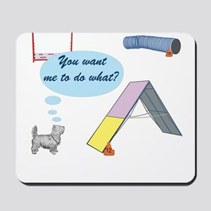You Want What? Mousepad