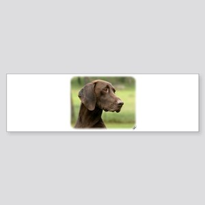 German Shorthaired Pointer 9Y163D-159 Sticker (Bum