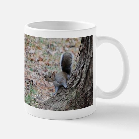 Curious Squirrell Mug