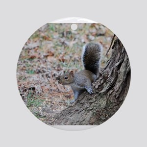 Curious Squirrell Ornament (Round)