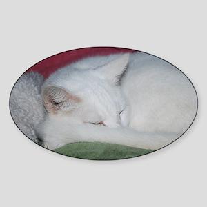 Sugar's Nap Sticker (Oval)