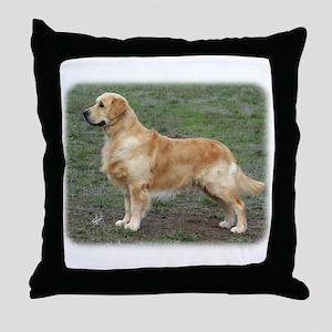 Golden Retriever 9Y186D-072 Throw Pillow