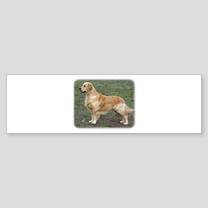 Golden Retriever 9Y186D-072 Sticker (Bumper)