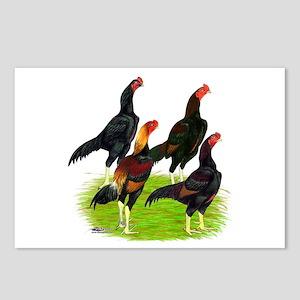 Oriental Gamefowl Postcards (Package of 8)