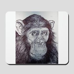Wildlife, Chimp, cute, Mousepad