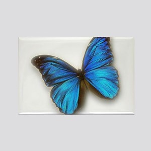 Blue Morpho Rectangle Magnet