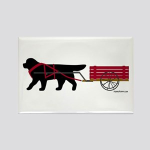 Newfoundland Pulling Cart Rectangle Magnet