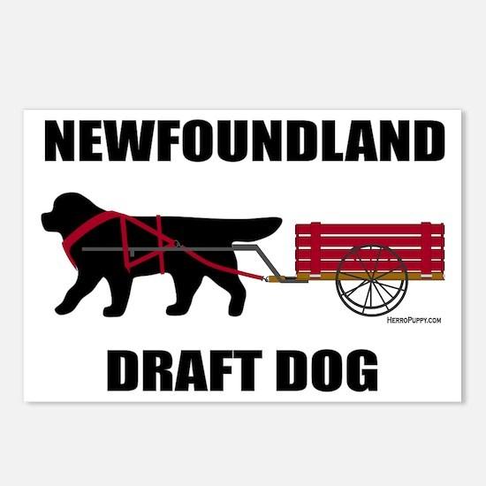 Newfoundland Draft Dog Postcards (Package of 8)