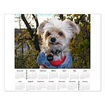 B Version Of Sticky's 2020 Calendar - Small Po