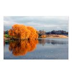 Orange Fall Beauty Postcards (Package of 8)