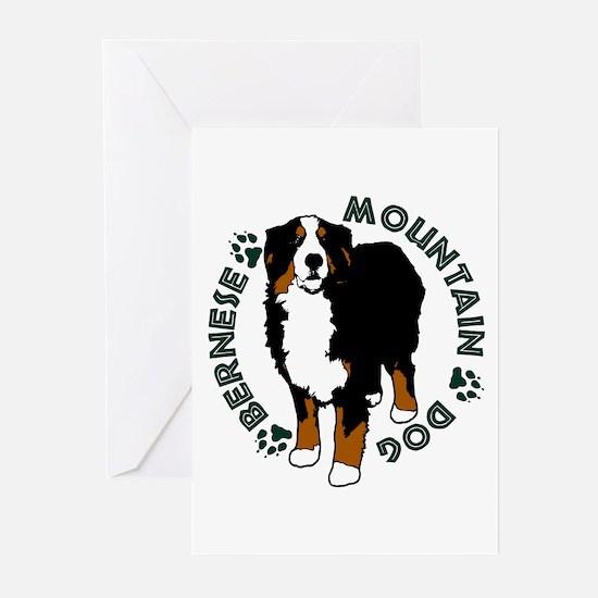 Standing Bernese Mountain Dog Greeting Cards (Pk o