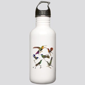 Six Pretty Hummingbirds Stainless Water Bottle 1.0