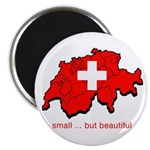 Small but Beautiful Magnet