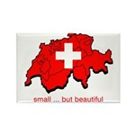 Small but Beautiful Rectangle Magnet (100 pack)