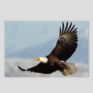 Eagle Flight Postcards (Package of 8)