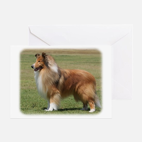 Collie Rough 9Y684D-009 Greeting Card