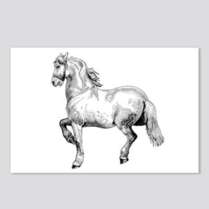 Horse Art IIlustration Postcards (Package of 8)
