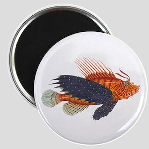Lionfish, Genus Pterois Magnet