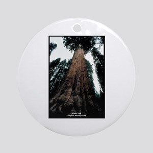 Sequoia National Park Tree Ornament (Round)