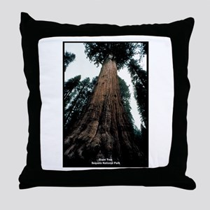 Sequoia National Park Tree Throw Pillow