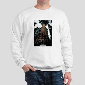 Sequoia National Park Tree (Front) Sweatshirt